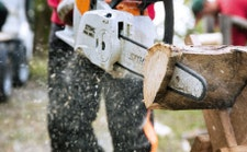 Chainsaws and Telescopic Pole Pruners